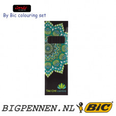 Conte by BIC® colouring set